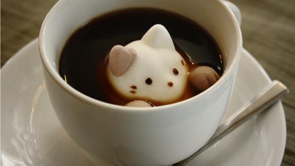 ネコのマシュマロ『Cafe Cat』が可愛すぎてキュン死に寸前